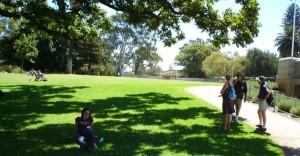 Kings Park - Perth.*kapan ya Jakarta punya taman seperti ini...