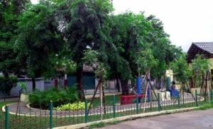 Taman Depan Rumah