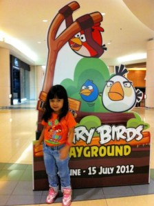 Salah Satu Angry Bird