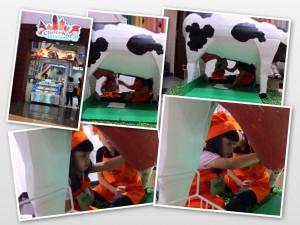 Pertama, memerah susu dari patung sapi...