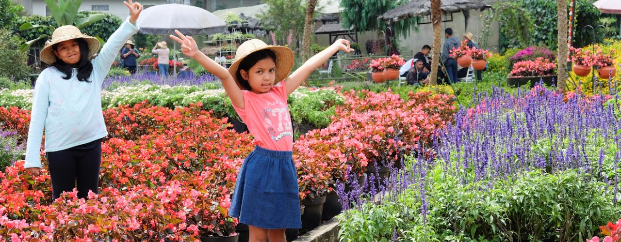 Warna-Warni Taman Begonia, Lembang