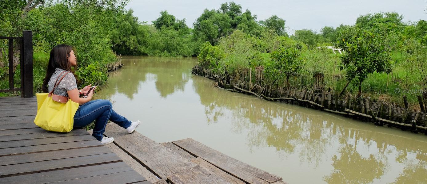 Wisata Hutan Mangrove di Surabaya