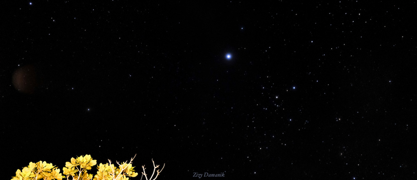 Nginap di Saifana Organic Farm dapat Milky Way