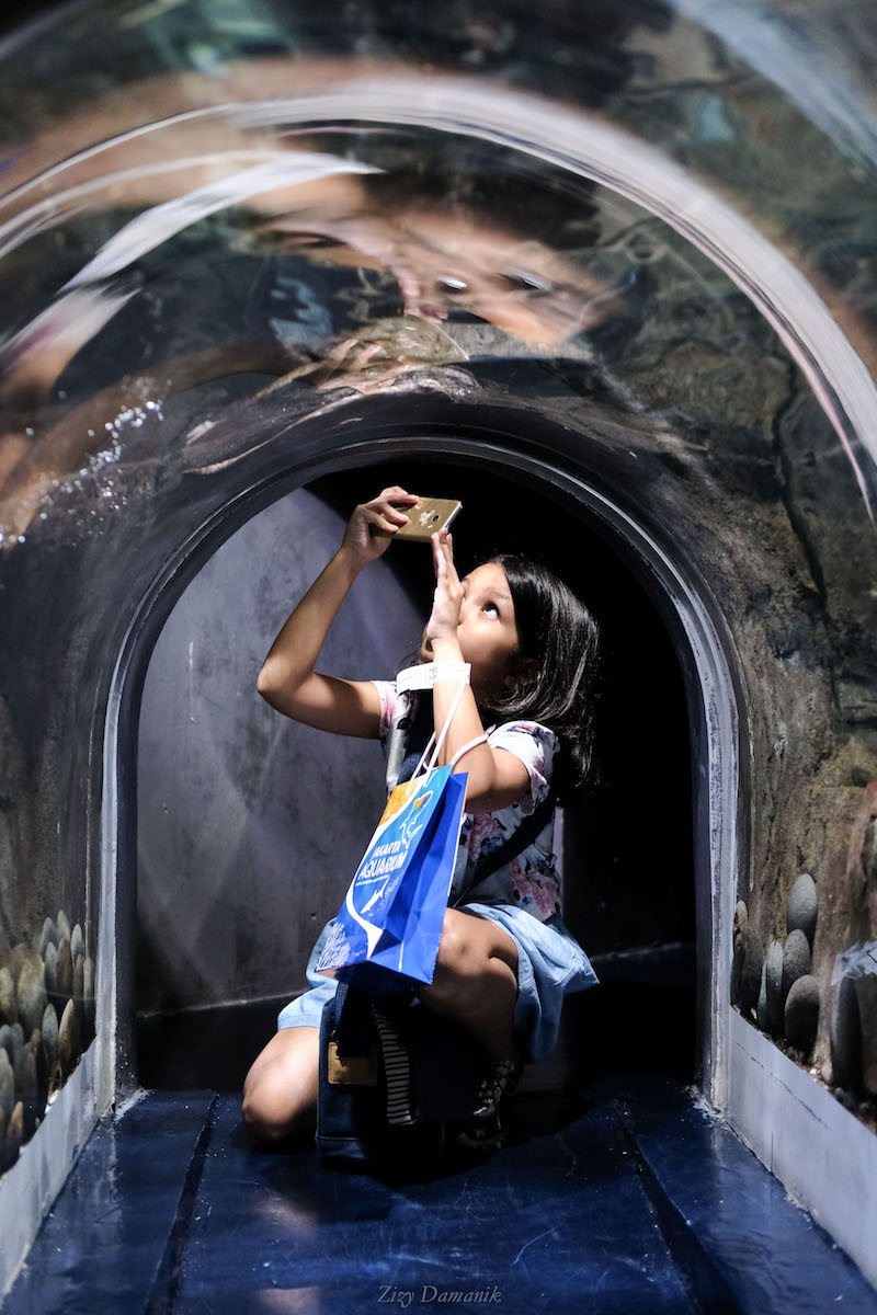 Otter Tunnel