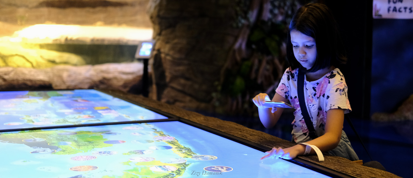 Liburan ke Jakarta Aquarium