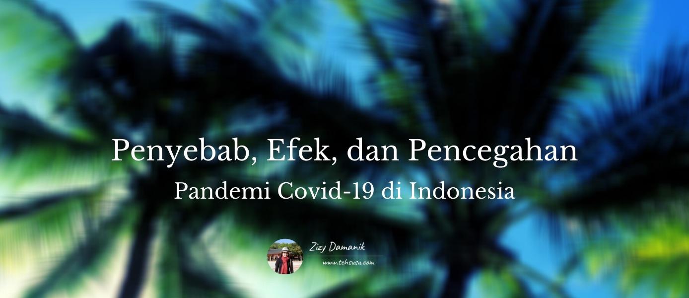 penyebab efek dan pencegahan pandemi covid019