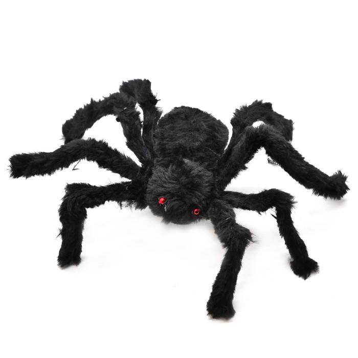 laba laba mainan halloween