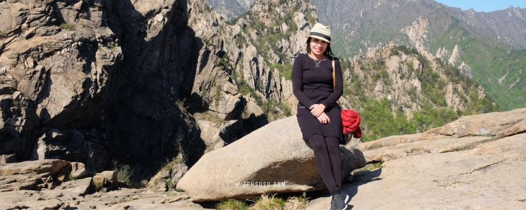 blog traveling